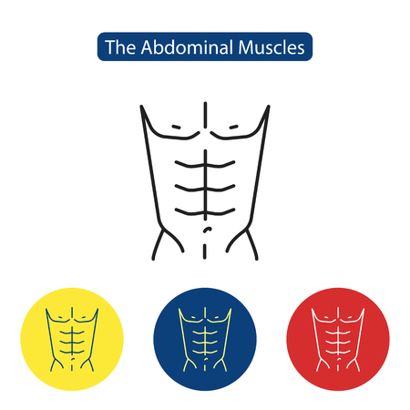 The abdominal muscles fit icon