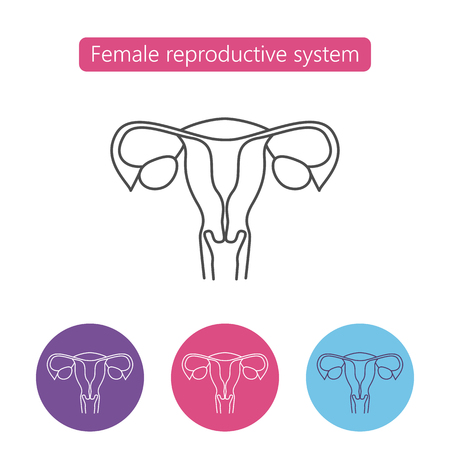 Uterus organ line icon. linear style sign for mobile concept and web design. Female reproductive system outline vector icon. Pregnancy symbol. Medical illustration. Editable stroke.