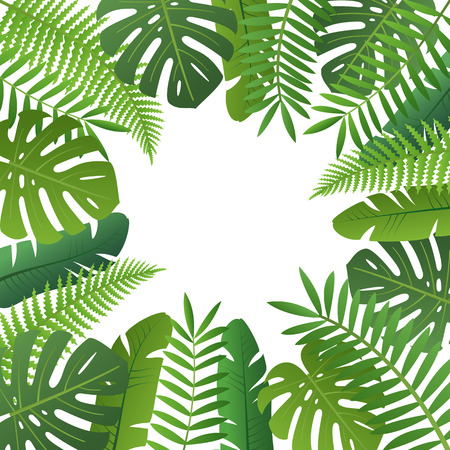Floral frame with space for text. Palm tree and fern leaves isolated on white background vector illustration. Retail seasonal promotion and advertisement. Travel agency advertising template