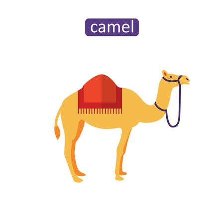 Arabian camel icon. Flat dromedary animal sign for mobile application.