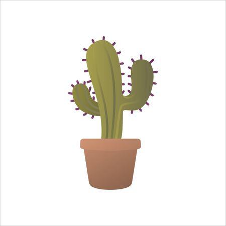 Cactus, houseplant in pot. Indoor plant with needles growing in vase.