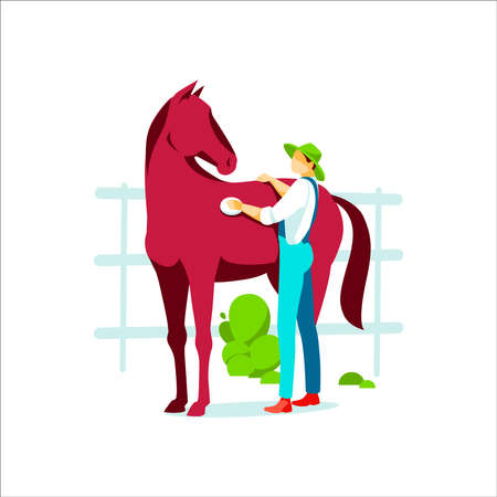 Male farmer grooming horse. Agricultural worker or professional groomer in overalls taking care of animal. Farming, agriculture or equestrian sport concept flat vector illustration on white background