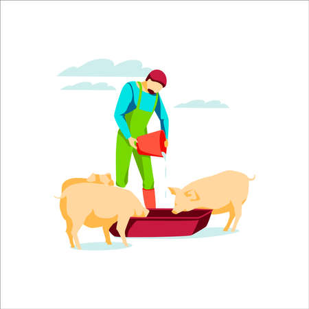 Male famer feeding pigs pouring water in trough. Farm animal husbandry and breeding. Livestock agricultural industry. Eco farming and agriculture concept flat vector illustration on white background Vetores
