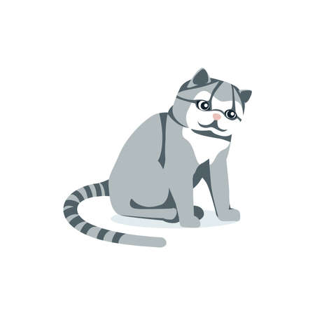 Cute fluffy gray cat with striped tail. Lovely sitting domestic pet animal cartoon vector illustration isolated on white background