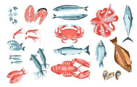 Fresh fishes and marine creatures set. Organic natural healthy nutritious seafood. Restaurant menu, fish market design cartoon vector illustration isolated on white background