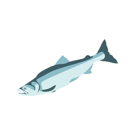 Mackerel, salmon, pollock or trout sea fish. Fresh marine fish, seafood menu, fish market design element. Organic natural healthy nutritious food cartoon vector image isolated on white background