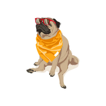 Cute pug dog in glasses and neckerchief. Adorable friendly purebred chubby pet animal with elegant accessories cartoon vector illustration isolated on white background