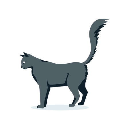Side view of gray cat pet. Cute domestic animal with fluffy tail cartoon vector illustration isolated on white background