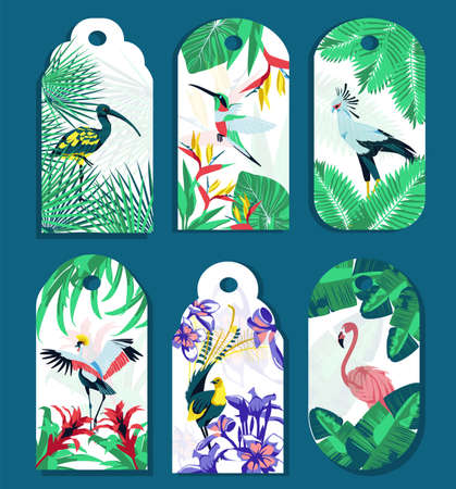 Collection of tags with tropical plants and birds. Beautiful bright exotic flowers and birds gift box tags or sale shopping hanging rectangular labels design vector illustration