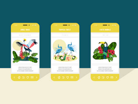 Jungle birds onboard screens set. Fauna, flora and exotic animals mobile application page templates. Tropical wildlife concept flat vector illustration flat vector illustration