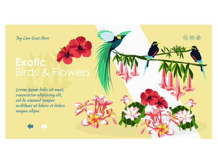 Exotic birds and flowers landing page template. Paradise nature, jungle forest website, homepage. Colorful birds and beautiful exotic tropical plants flat vector illustration
