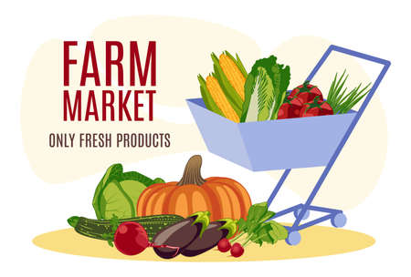 Farm market banner template. Wheelbarrow with natural organic vegetables. Only fresh products. Eco food delivery service, store, farm market, packaging and advertising design flat vector illustration 矢量图像