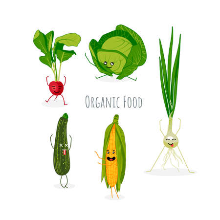 Organic food banner template design. Healthy diet, eco vegetarian food poster, card with cute vegetables cartoon characters. Fresh farm food store, market, online delivery service vector illustration