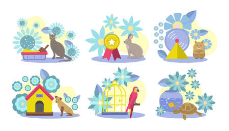Collection of domestic animals, care accessories. Cute cat, dog, rabbit, hamster, parrot, tortoise and parrot home pet friends. Pet shop, veterinary clinic design element cartoon vector illustration