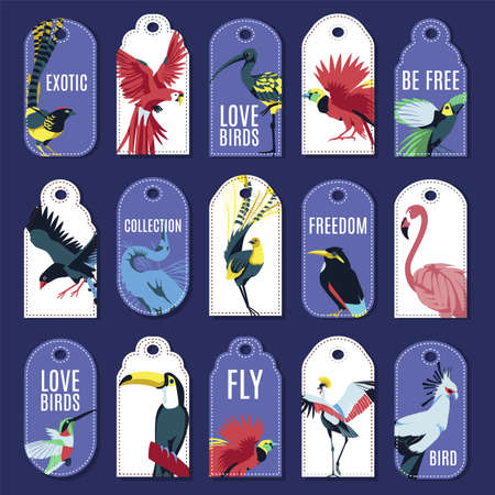 Tags with exotic birds collection. Colorful price and gift tags with beautiful tropical birds, bright paper labels of various shapes flat vector illustration