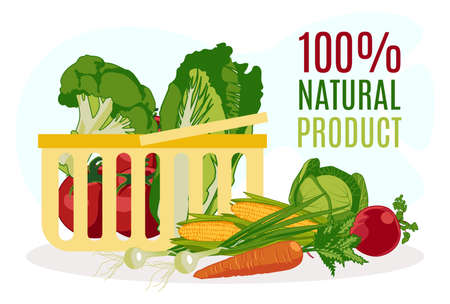 100 percent natural product banner template. Shopping basket with fresh organic vegetables. Eco food store, farm market, packaging and advertising design flat vector illustration 矢量图像