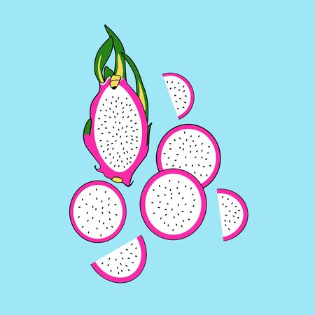 Dragon fruits on blue background. Half dragon fruit and pieces. Vector flat cartoon illustration.