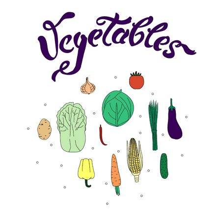 Vector illustration with vegetables and quote. Isolated vecror vegetables on white background.  Handmade quote. Bright design for advertising, banner, poster, postcard Illustration