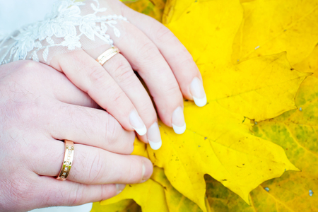 Hands of the bride and groom fall leaves