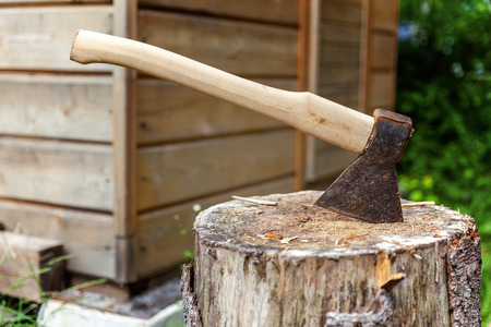 Old axe in stump