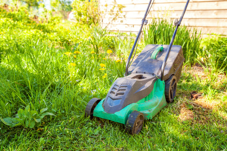 Lawn mower cutting green grass in backyard in sunny day. Gardening country lifestyle background. Stock Photo