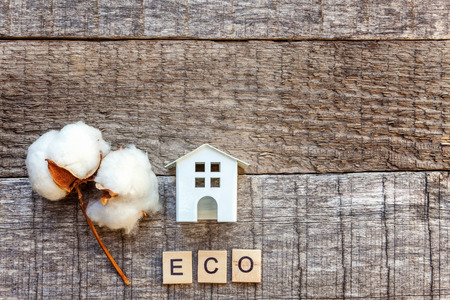 Miniature toy model house with inscription ECO letters word on wooden backdrop. Eco Village, abstract environmental background. Real estate mortgage property insurance sweet home ecology concept