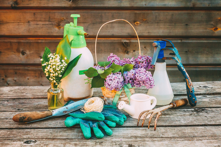 Gardening tools, watering can, shovel, spade, pruner, rake, glove, lilac flowers on wooden table in barn. Spring or summer in garden. Eco nature horticulture hobby concept background Stock Photo