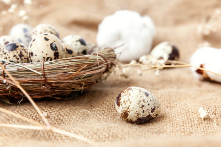 Easter decoration with egg in nest and cotton on brown rustic linen canvas background. Easter concept. Flat lay top view copy space. Spring greeting card