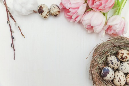 Spring greeting card. Easter eggs in nest cotton willow branch and pink fresh tulip flowers bouquet on rustic white wooden background. Easter concept. Flat lay top view copy space. Spring flowers tulips Stok Fotoğraf