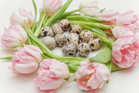 Spring greeting card. Easter eggs in nest and pink fresh tulip flowers bouquet on rustic white wooden background. Easter concept. Flat lay top view copy space. Spring flowers tulips 版權商用圖片