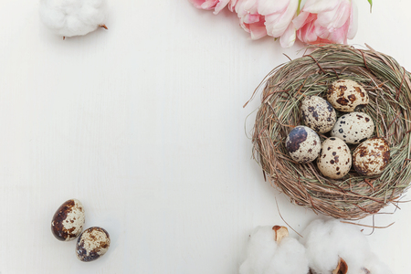 Spring greeting card. Easter eggs in nest cotton and pink fresh tulip flowers bouquet on rustic white wooden background. Easter concept. Flat lay top view copy space. Spring flowers tulips