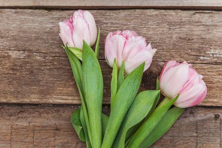 Biglietto di auguri di primavera. Bouquet di fiori di tulipani rosa pastello luce fresca su sfondo di legno. Concetto di compleanno di giorno di San Valentino anniversario felice festa della mamma di Pasqua. Spazio di copia piatto vista dall'alto