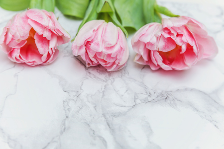 Spring greeting card. Bouquet of fresh light pastel pink tulips flowers on marble background. Happy holiday easter mother day anniversary valentine day birthday concept. Flat lay top view copy space