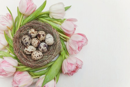 Spring greeting card. Easter eggs in nest and pink fresh tulip flowers bouquet on rustic white wooden background. Easter concept. Flat lay top view copy space. Spring flowers tulips Imagens