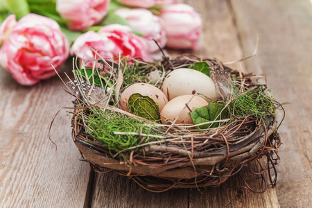 Spring greeting card. Easter eggs in nest with moss and pink fresh tulip flowers bouquet on rustic shabby wooden background. Easter concept. Flat lay top view copy space. Spring flowers tulips Stok Fotoğraf