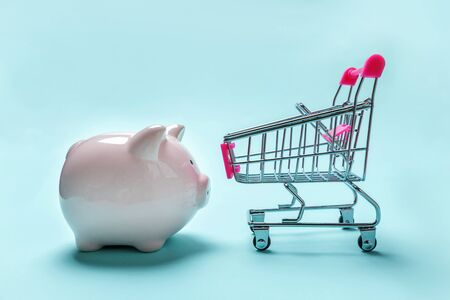 Sale buy mall market shop consumer saving and budget concept. Small supermarket grocery push cart for shopping with piggy bank isolated on blue pastel colourful trendy background