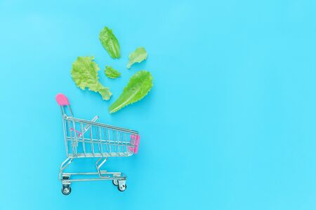 Ecology eco products health food vegan vegetarian concept . Small supermarket grocery push cart for shopping with green lettuce leaves isolated on blue pastel colorful background. Copy space 写真素材