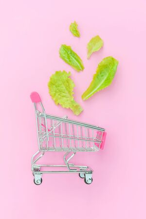 Ecology eco products health food vegan vegetarian concept . Small supermarket grocery push cart for shopping with green lettuce leaves isolated on pink pastel colorful background. Copy space