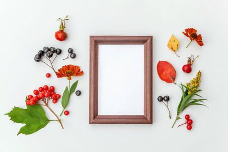 Autumn floral composition. Vertical frame mockup chokeberry rowan berries colorful leaves dogrose flowers on white background. Fall natural plants ecology concept. Flat lay top view copy space