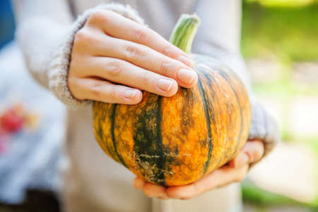 Closeup natural autumn fall view woman hands holding yellow pumpkin. Inspirational nature october or september wallpaper. Change of seasons, ripe organic food concept. Halloween party Thanksgiving day