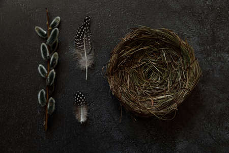 Happy Easter concept. Preparation for holiday. Pussy willow flowers branches, feather nest on trendy grunge scratched dark black stone shale background. Simple minimalism flat lay top view copy space