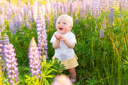 Happy little girl smiling outdoor. Beautiful blond young baby girl resting on summer field with blooming wild flowers green background. Free happy kid, childhood concept. Positive toddler child 스톡 콘텐츠