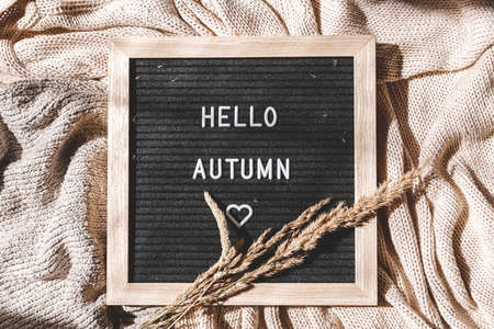 Autumnal Background. Black letter board with text phrase Hello Autumn and dried plant lying on white knitted sweater. Top view flat lay. Thanksgiving banner. Hygge mood cold weather concept 스톡 콘텐츠