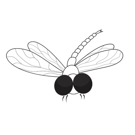 adder: Dragonfly. Black and white illustration.