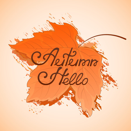 Yellowed maple leaf. Hello Autumn hand lettering.