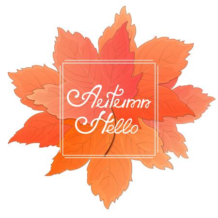 メープルのブーケを残します。こんにちは秋の碑文のあるフレーム。季節限定販売のコンセプトです。
