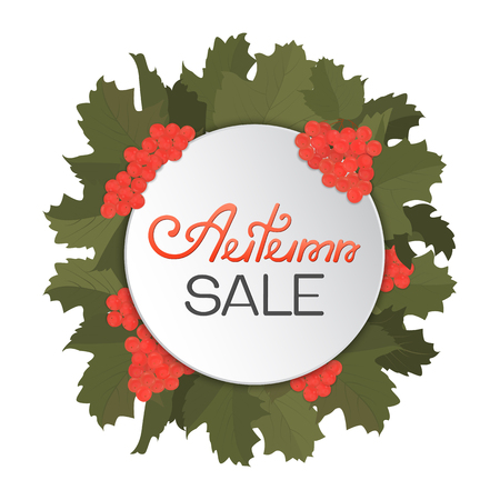 guelder rose: A wreath of viburnum and leaves. Advertising discount banner Autumn sale hand drawn.