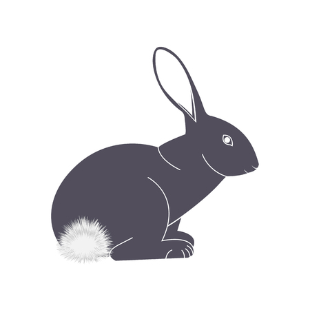 Rabbit with a fluffy tail vector icon Illustration