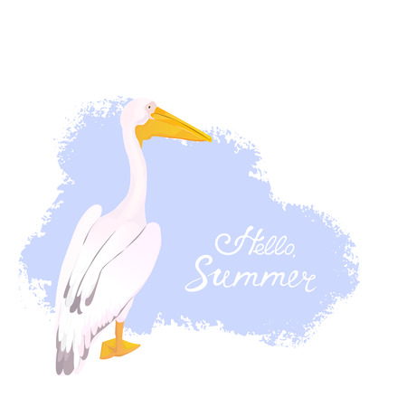 Pink pelican. Waterfowl. Hello summer hand lettering.