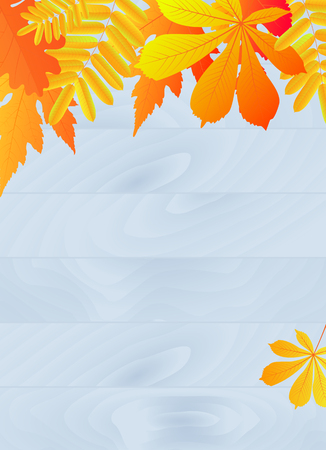 Autumn poster with yellowed leaves. Design element for banner, flyer, discount for the fall sale. Stock Photo